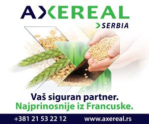 Axereal-300x250