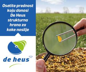 DE-HEUS300x250